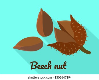 Beech nut icon. Flat illustration of beech nut vector icon for web design