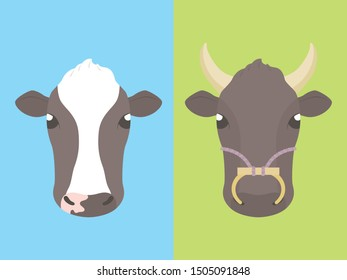 Beef cow and dairy cow, vector illustration