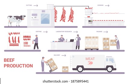 Beef production on meat factory infographic process vector illustration. Cartoon info education poster with automated processing line from cutting, sorting, packaging farm meat products technology