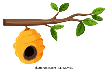 Beehive hanging from a tree branch with leaves illustration