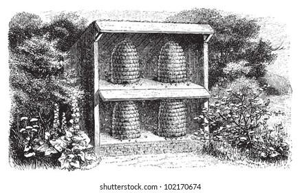 Beehive / vintage illustration from Brockhaus Konversations-Lexikon 1908