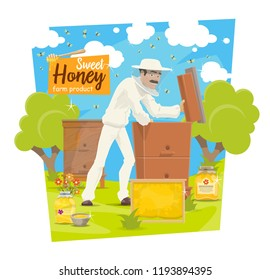Beekeeper at apiary taking honey from hive, vector beekeeping. Vector cartoon beekeeper man in protective outfit with honeycomb or honey jar and bees swarm