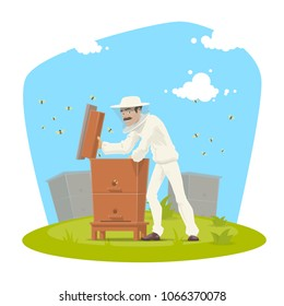 Beekeeper at beekeeping farm icon. Apiarist in protective suit and hat opened beehive to inspect frames with honeycomb and honey bee colony cartoon poster for apiculture and apiary themes design