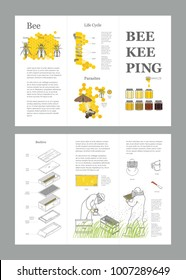 Beekeeping honey vector template with apiculture equipment, beekeeper, smoker, beehive, bee, honeycomb, illustrating the life cycle of a bee, bee parasites, honey gathering. Brochure.