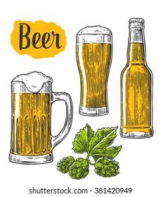 Beer glass, mug, bottle, hop.  Vector vintage engraved illustration isolated on white background.