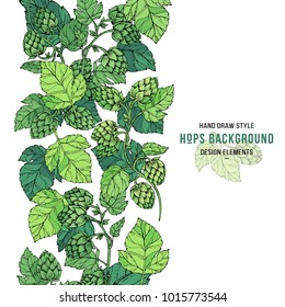 Beer hop banner design. Sketches of hop plant, border of branch with leaves in engraving style. Hops decorative border print. Beer ingredients vector illustration. Hand drawn style