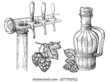 beer tap hops and bottle collection vector illustration