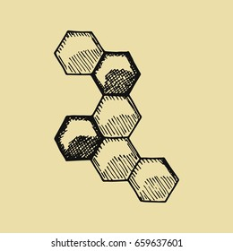 Bees honeycomb sketch. Hand drawing vector