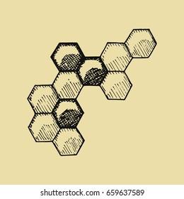 Bees honeycomb sketch. vector illustration