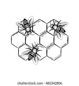 Bees with honeycombs set. Black and white graphic doodle design. Colored sketch. Vector illustration.