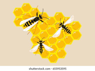 Bees on honeycombs vector illustration