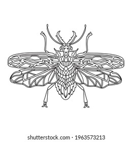 Beetle Brazilian woodcutter coloring book. Woodcutter beetle linear vector illustration. Anti-stress coloring book for adults and children. Hand-drawn doodle coloring book.