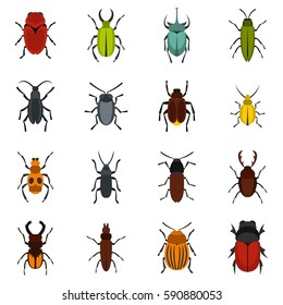Beetle and bug icons set. Flat illustration of beetle and bug vector icons logo isolated on white background