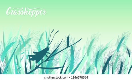 Beetle grasshopper sits on a blade of grass in the bushes illustration. Life of insects in the wild illustration. Beauty macro world