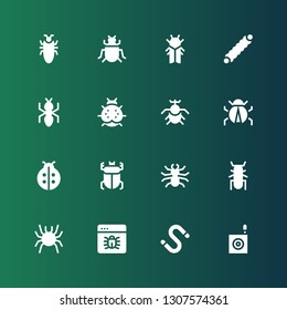 beetle icon set. Collection of 16 filled beetle icons included Bug, Worm, Beetle, Ladybird, Ladybug, Ant, Caterpillar, Cicada, Insect, Cockroach