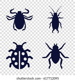 Beetle icons set. set of 4 beetle filled icons such as beetle