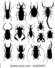 Beetles / bugs silhouettes on a wight background. vector illustration