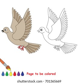 Beige turtledove to be colored, the coloring book for preschool kids with easy educational gaming level.