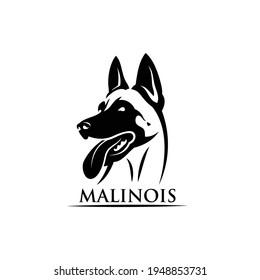 Belgian shepherd dog Malinois face - isolated vector illustration