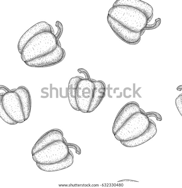 Bell pepper. Seamless pattern. Outline hand drawn sketch. Vector illustration isolated on white background