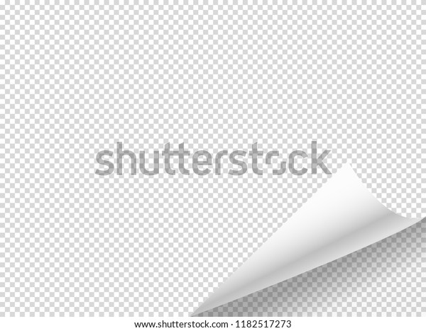 Bending paper vector mockup. Vector object isolated on transparent background
