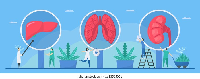 Benefit of cannabis. This thing can make a good health such as repair lung, liver, and kidney. Vector illustration in flat style.