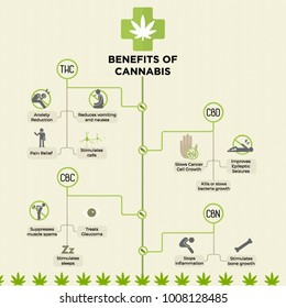 Benefits of Cannabis Infographic. Medical Marijuana