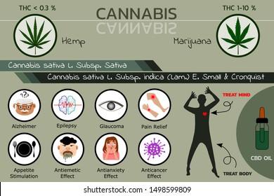 Benefits of cannabis plant (hemp and marijuana) for medical treatment , vector