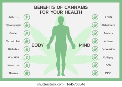 benefits of CBD for body and mind health or Cannabidiol, Cannabis infographic information concept, hemp. flat symbol icon vector illustration design