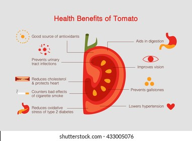 Benefits of Tomato Infographic, flat design vector illustration. Good source of antioxidants and improves vision.