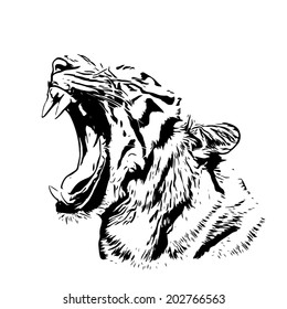 Bengal tiger sketch silhouette. Mask of the biggest cat with open chaps. Wild beauty of the most dangerous and mighty beast. Black and white vector illustration