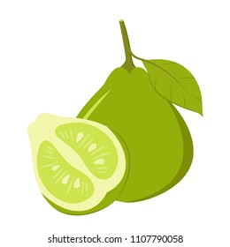Bergamot cartoon vector. free space for text. wallpaper. background.