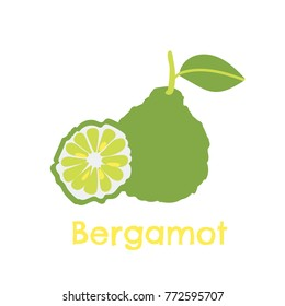 Bergamot fruit with a leaf and a sliced fruit. A digitally hand drawn illustration. Vector flat design. Isolated on white.