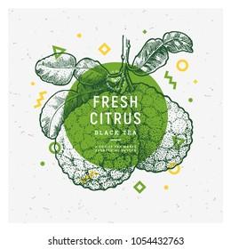 Bergamot fruit vintage design template. Botanical fruit. Engraved pomegranate. Vector illustration