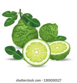 Bergamot Green Fresh