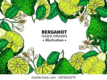 Bergamot vector drawing frame. Isolated template of citrus fruit, flower, slice. Essential oil colorful sketch. Beauty and spa, cosmetic, tea ingredient. Great for label, flyer, packaging design.