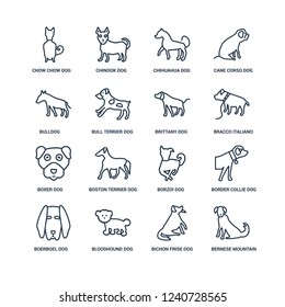 Bernese Mountain dog, Bichon Frise Bloodhound Boerboel Border Collie Chow Bulldog, Boxer Brittany dog outline vector icons from 16 set