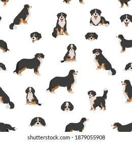 Bernese mountain dog seamless, pattern. Different poses, Bernese sennenhund puppy.  Vector illustration