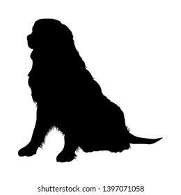 Bernese Mountain Dog Silhouette. Smooth Vector Illustration.