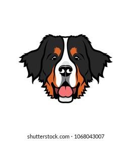 Bernese mountaing dog - isolated vector illustration