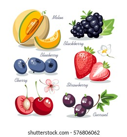 Berries collection set melon cherry blackberry strawberry blueberry currant