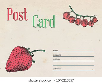 berries garden postcard envelope template design and illustration.   Strawberry and red currant berry