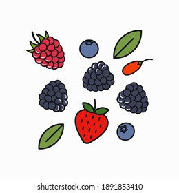 Berry blend logo. Raspberry, blueberry, blackberry and goji berries on white background
