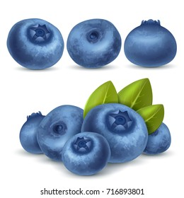 Berry blueberry set for icon, label, package and other designs. Realistic 3d vector illustration.