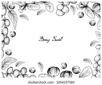 Berry Fruit, Illustration Frame of Hand Drawn Sketch of Antidesma Ghaesembilla and Barbados Cherry or Malpighia Emarginata Fruits Isolated on White Background.