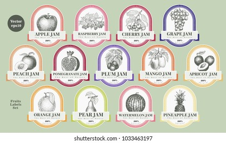 Berry and fruit labels set. Retro style design template. Hand drawn vector illustrations.