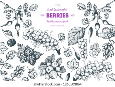 Berry hand drawn vector illustration frame. Hand drawn sketch illustration with goji berries, buckthorn, cloudberry, cherry, raspberry, barberry. Healthy food design template with berry