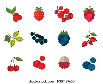 Berry Icon Set. Cranberry Black Currant Blackberry Blueberry Dogrose Gooseberry Red Currant Raspberry Strawberry Cowberry Cherry