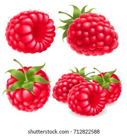 Berry raspberry set for icon, label, package and other designs. Realistic 3d vector illustration.
