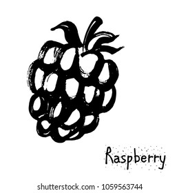 Berry raspberry vector illustration